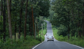 Nagarhole to Wayanad, Highway